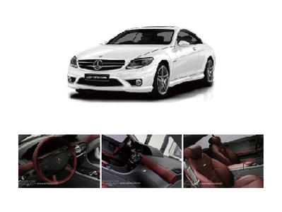 Benz CL AMG Package Interior Leather Seat/Interior